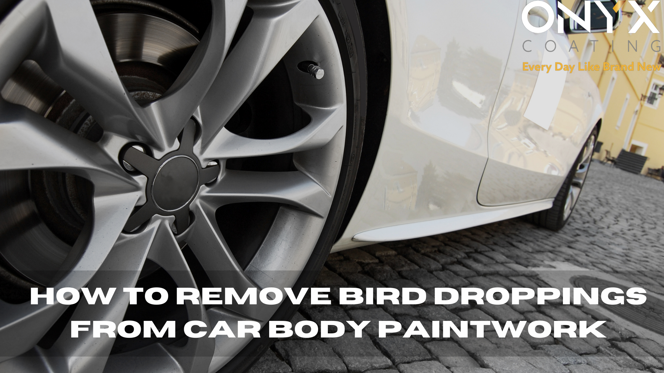 How to remove bird droppings from car body paintwork